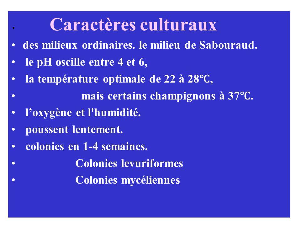Caractères culturaux des milieux ordinaires.le milieu de Sabouraud.