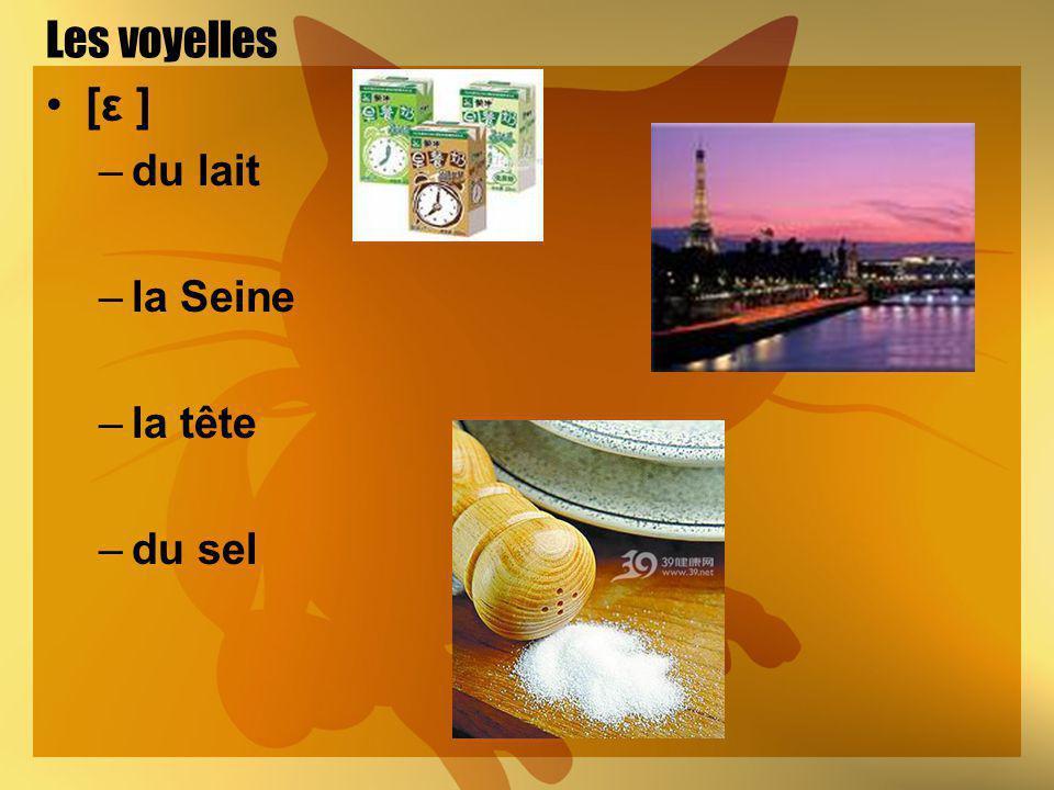 Les voyelles [ε ] –du lait –la Seine –la tête –du sel