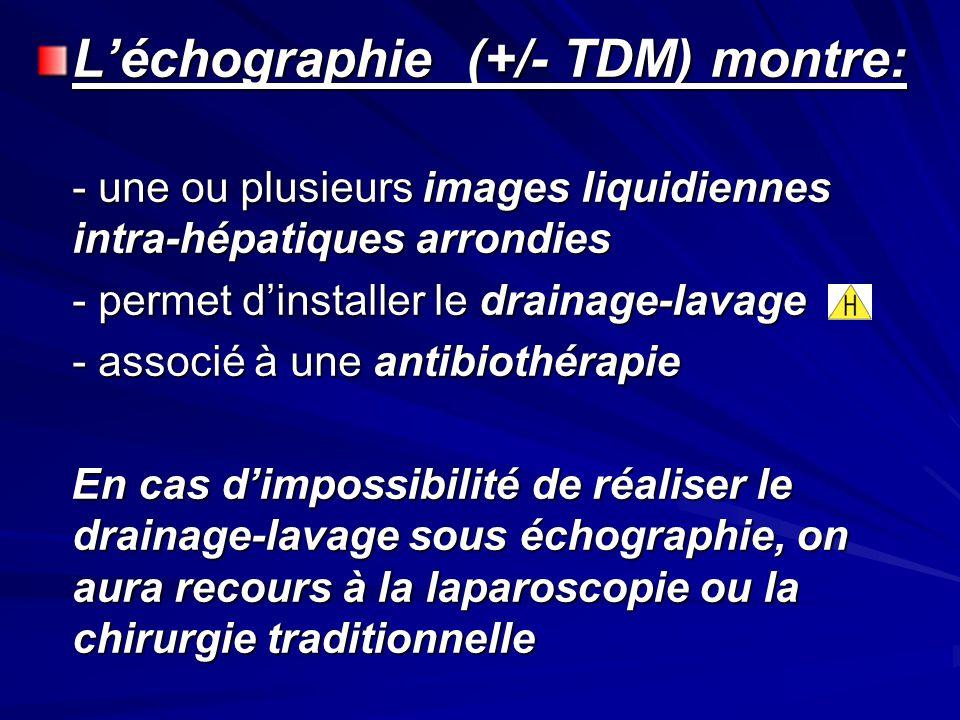 Léchographie (+/- TDM) montre: - une ou plusieurs images liquidiennes intra-hépatiques arrondies - permet dinstaller le drainage-lavage - associé à un