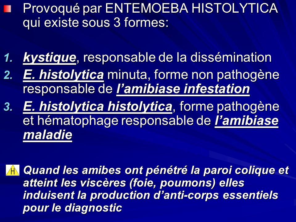 Provoqué par ENTEMOEBA HISTOLYTICA qui existe sous 3 formes: 1. kystique, responsable de la dissémination 2. E. histolytica minuta, forme non pathogèn
