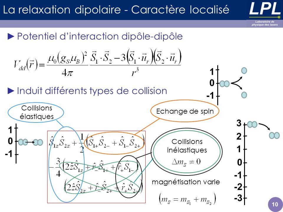 10 La relaxation dipolaire - Caractère localisé Potentiel dinteraction dipôle-dipôle Induit différents types de collision Collisions élastiques Echang
