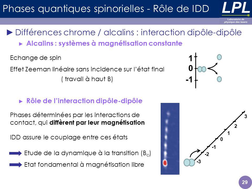29 Phases quantiques spinorielles - Rôle de IDD Différences chrome / alcalins : interaction dipôle-dipôle Alcalins : systèmes à magnétisation constant