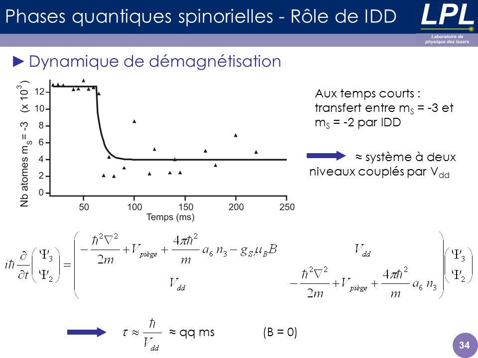34 Phases quantiques spinorielles - Rôle de IDD Dynamique de démagnétisation Aux temps courts : transfert entre m S = -3 et m S = -2 par IDD système à