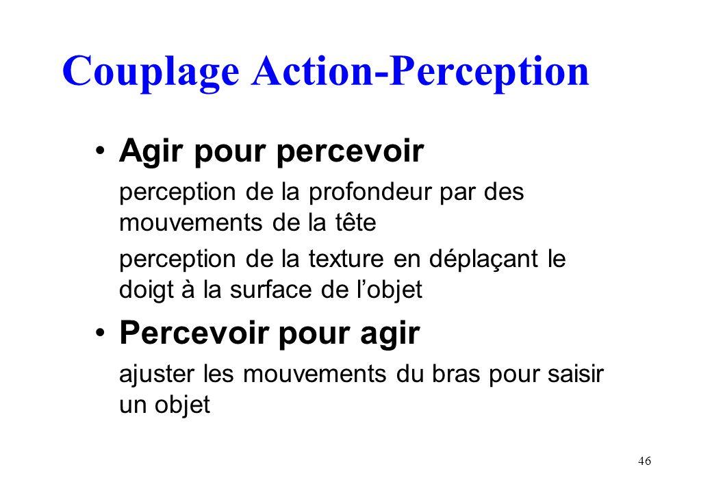 46 Couplage Action-Perception Agir pour percevoir perception de la profondeur par des mouvements de la tête perception de la texture en déplaçant le doigt à la surface de lobjet Percevoir pour agir ajuster les mouvements du bras pour saisir un objet