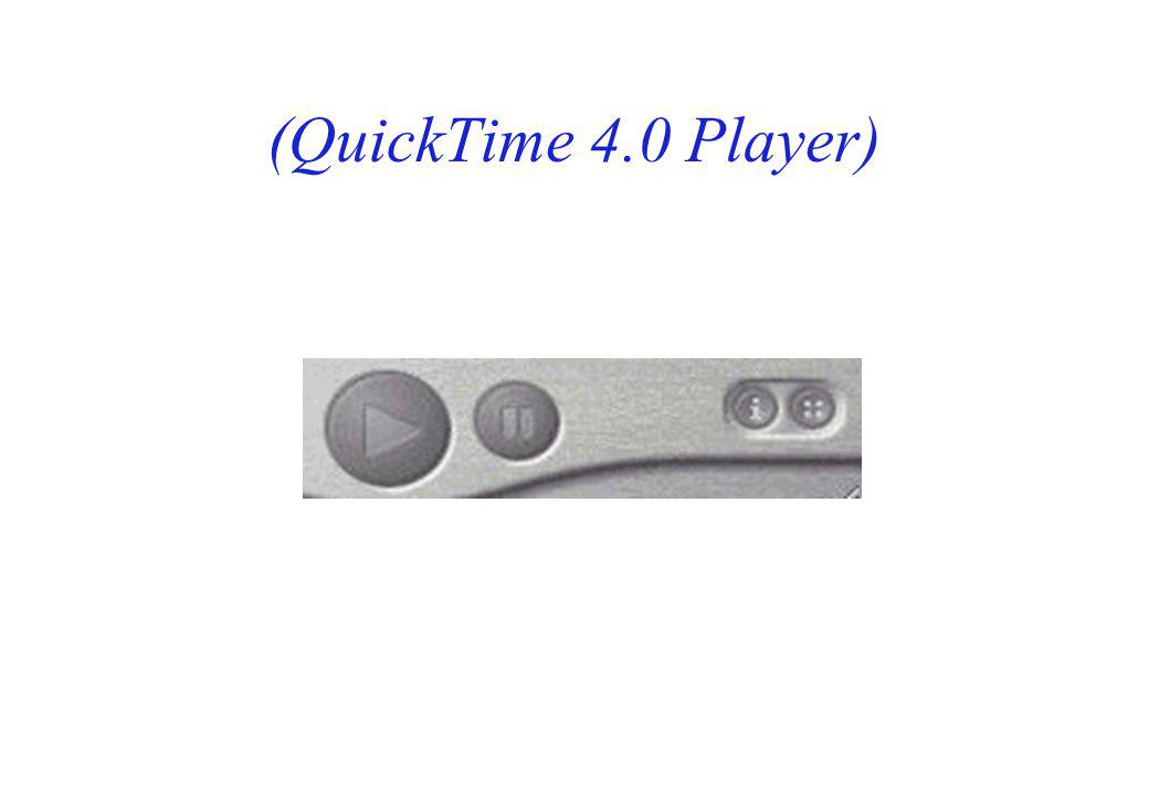 (QuickTime 4.0 Player)