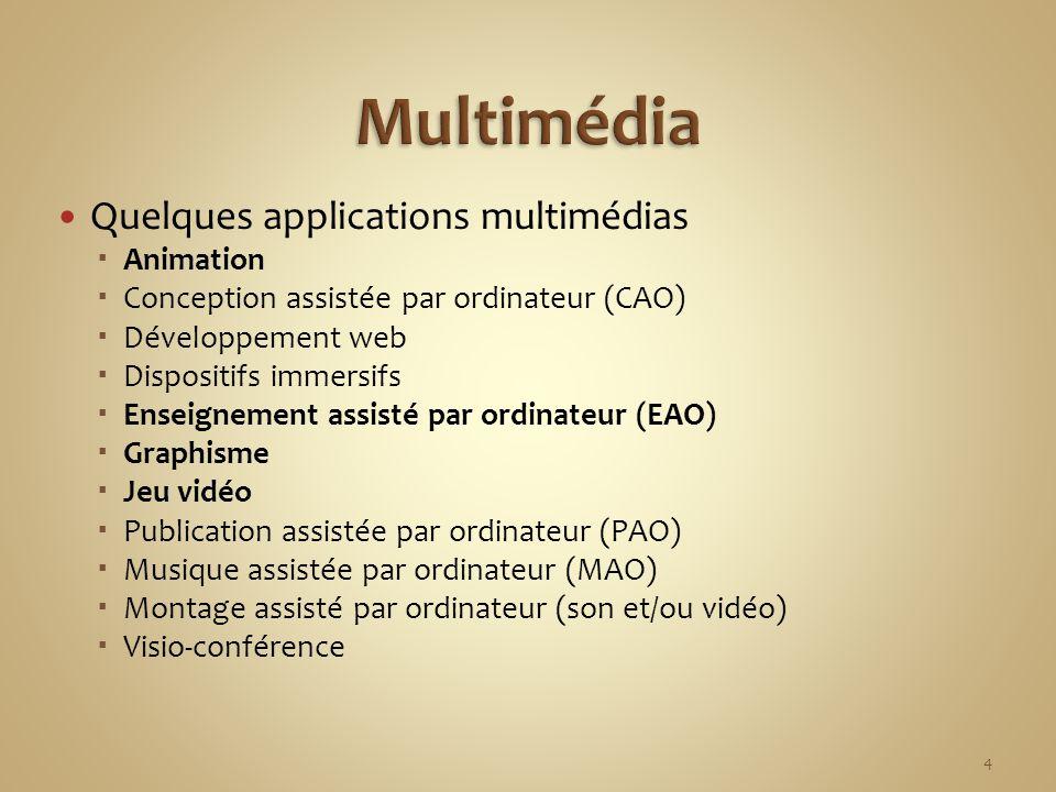 Quelques applications multimédias Animation Conception assistée par ordinateur (CAO) Développement web Dispositifs immersifs Enseignement assisté par