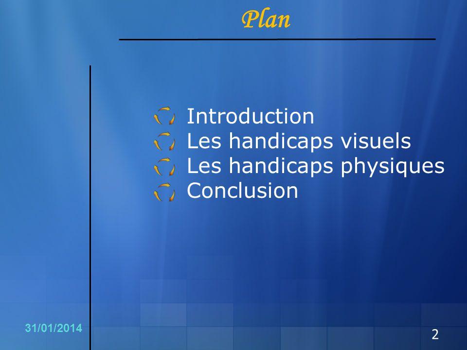 Plan Introduction Les handicaps visuels Les handicaps physiques Conclusion 2 31/01/2014