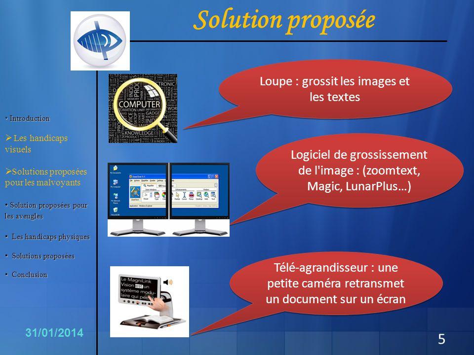 Solution proposée Loupe : grossit les images et les textes Télé-agrandisseur : une petite caméra retransmet un document sur un écran Logiciel de gross