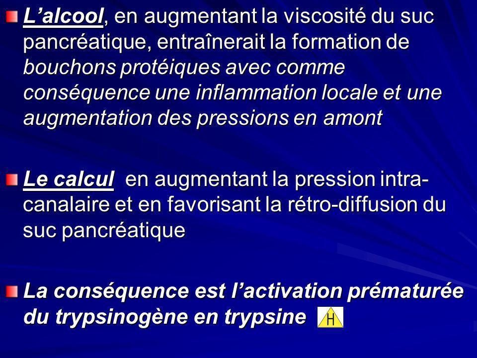 Lalcool, en augmentant la viscosité du suc pancréatique, entraînerait la formation de bouchons protéiques avec comme conséquence une inflammation loca