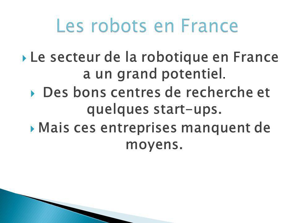 Le secteur de la robotique en France a un grand potentiel. Des bons centres de recherche et quelques start-ups. Mais ces entreprises manquent de moyen