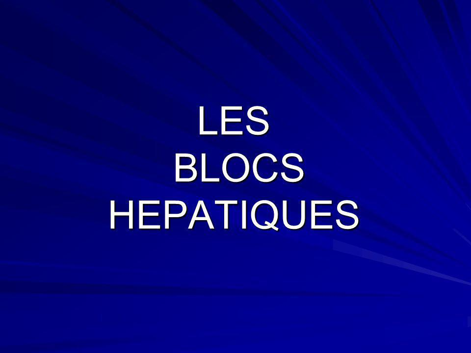LES BLOCS HEPATIQUES