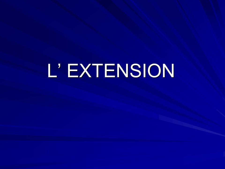 L EXTENSION
