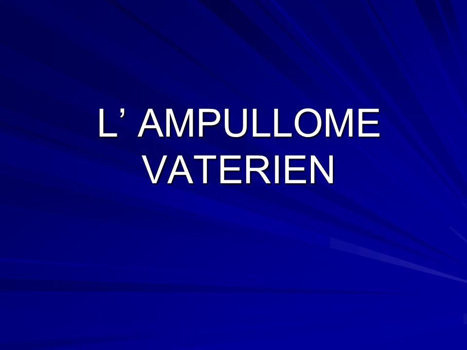 L AMPULLOME VATERIEN