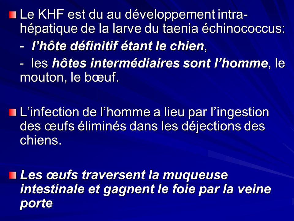 Le KHF est du au développement intra- hépatique de la larve du taenia échinococcus: - lhôte définitif étant le chien, - les hôtes intermédiaires sont