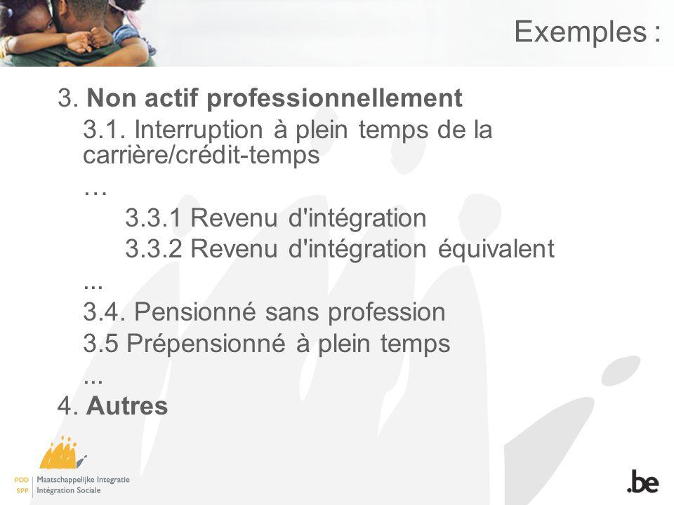 Exemples : 3. Non actif professionnellement 3.1.