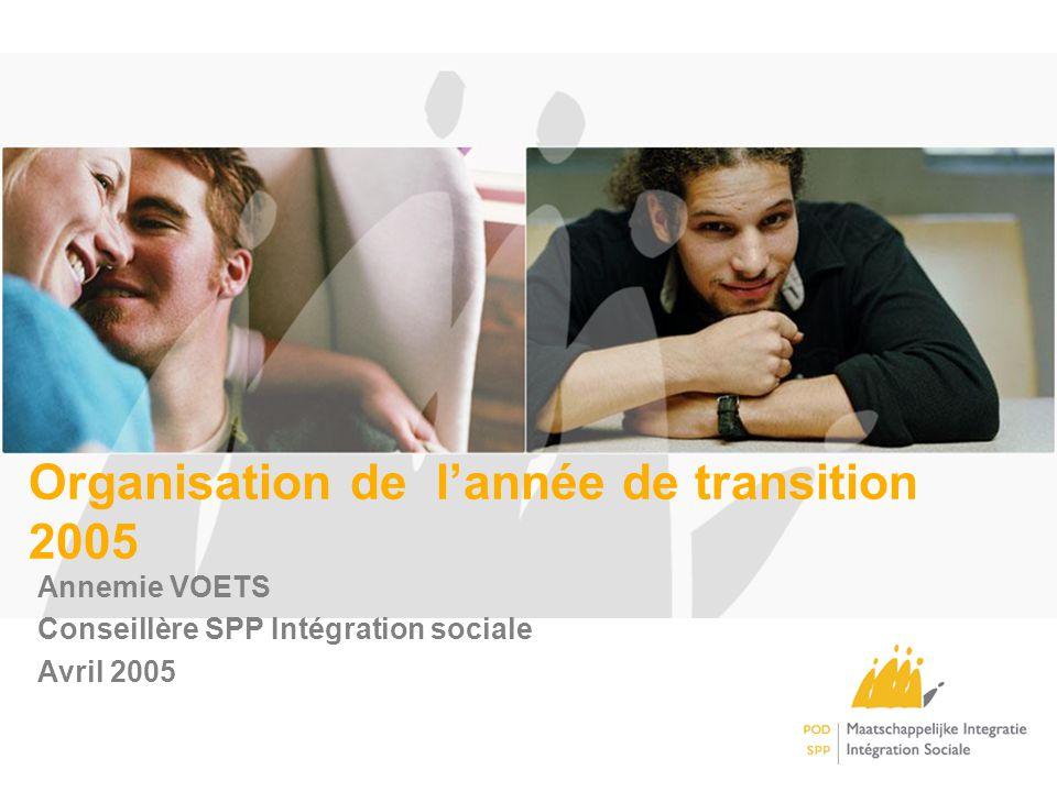 Organisation de lannée de transition 2005 Annemie VOETS Conseillère SPP Intégration sociale Avril 2005