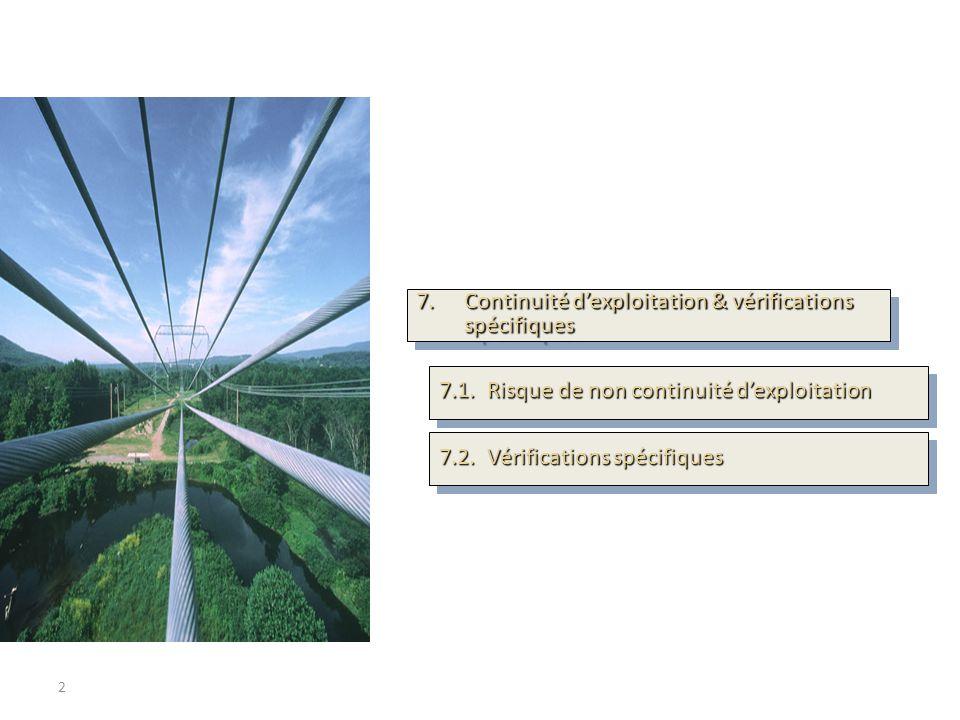 2 SOMMAIRE 7.Continuité dexploitation & vérifications spécifiques 7.1.Risque de non continuité dexploitation 7.2.Vérifications spécifiques