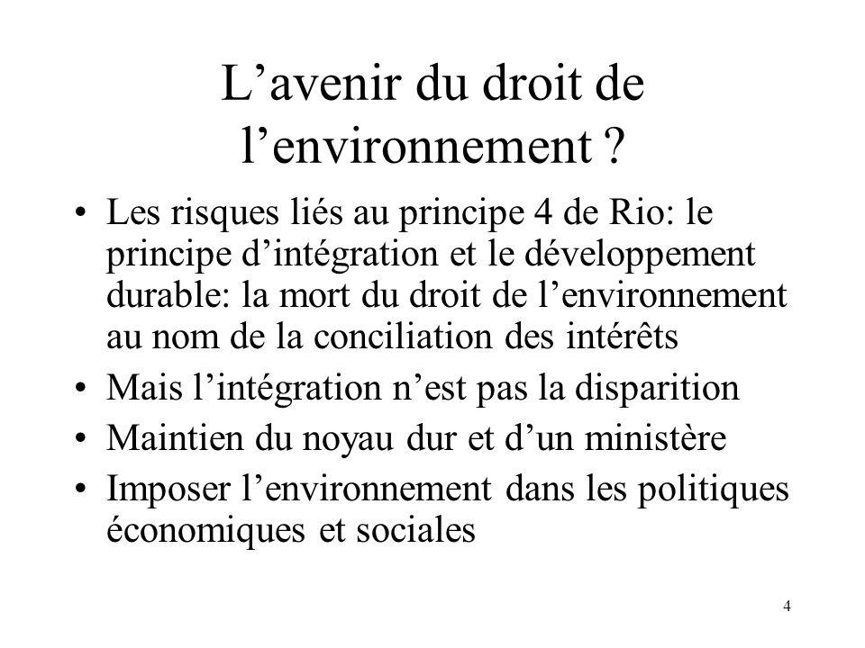 4 Lavenir du droit de lenvironnement ? Les risques liés au principe 4 de Rio: le principe dintégration et le développement durable: la mort du droit d