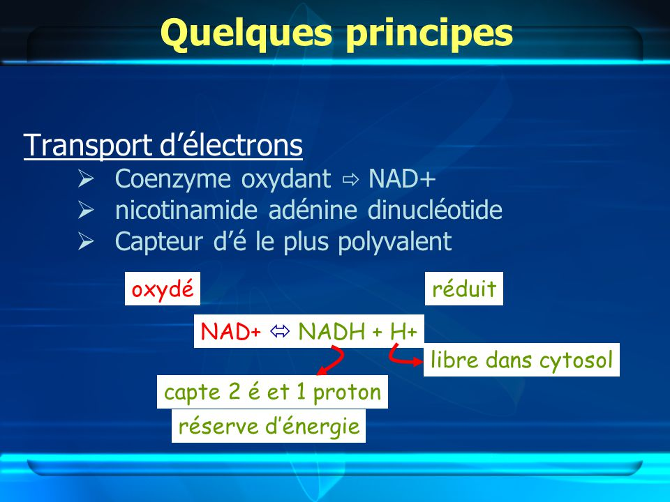 Quelques principes Transport délectrons Coenzyme oxydant NAD+ nicotinamide adénine dinucléotide Capteur dé le plus polyvalent NAD+ NADH + H+ libre dans cytosol capte 2 é et 1 proton oxydéréduit réserve dénergie