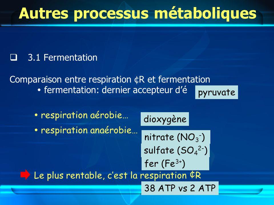 Autres processus métaboliques 3.1 Fermentation Comparaison entre respiration ¢R et fermentation fermentation: dernier accepteur dé 38 ATP vs 2 ATP respiration aérobie… dioxygène nitrate (NO 3 - ) sulfate (SO 4 2- ) fer (Fe 3+ ) pyruvate respiration anaérobie… Le plus rentable, cest la respiration ¢R