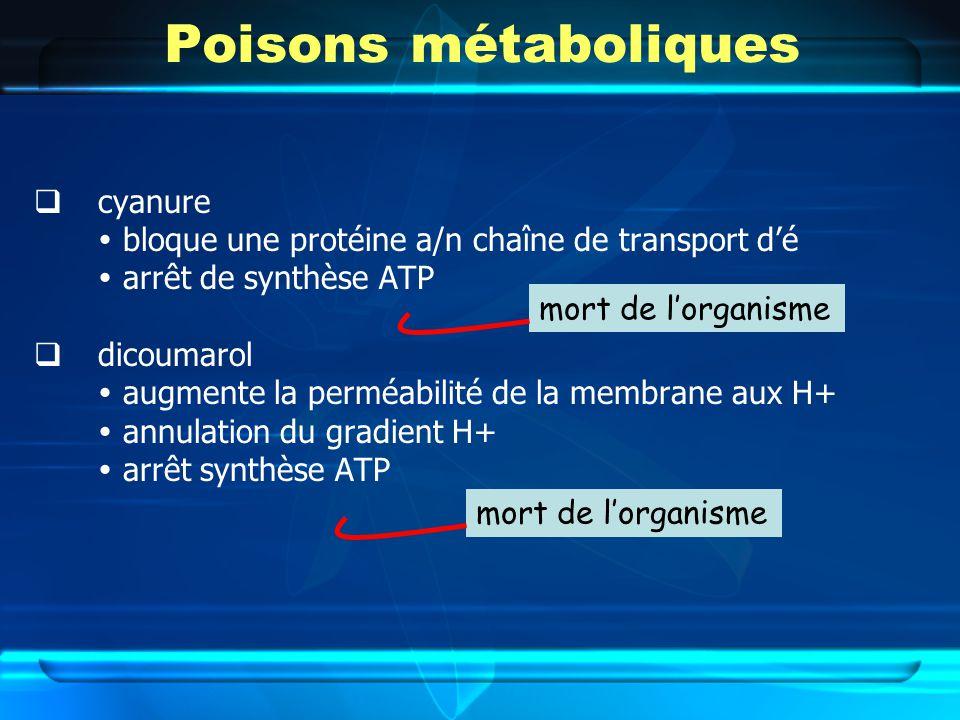 Poisons métaboliques cyanure bloque une protéine a/n chaîne de transport dé arrêt de synthèse ATP dicoumarol augmente la perméabilité de la membrane aux H+ annulation du gradient H+ arrêt synthèse ATP mort de lorganisme
