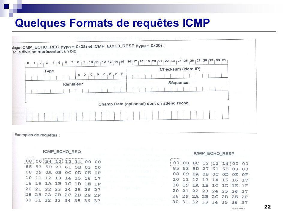 . Quelques Formats de requêtes ICMP. 22