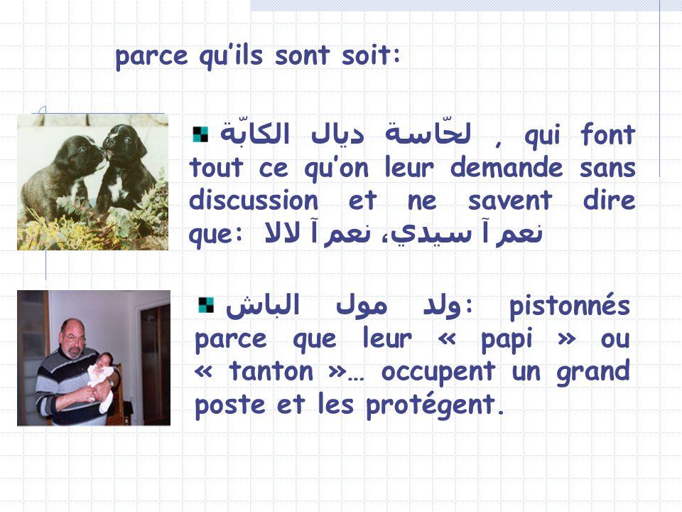 ولد مول الباش : pistonnés parce que leur « papi » ou « tanton »… occupent un grand poste et les protégent.