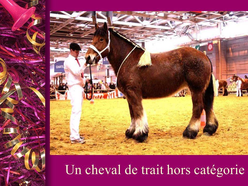 Du 22 février 2014 au 2 mars 2014 est une foire-exposition annuelle organisée à Paris au parc des expositions de la porte de Versailles dans la dernière semaine du mois de février/première semaine du mois de mars.