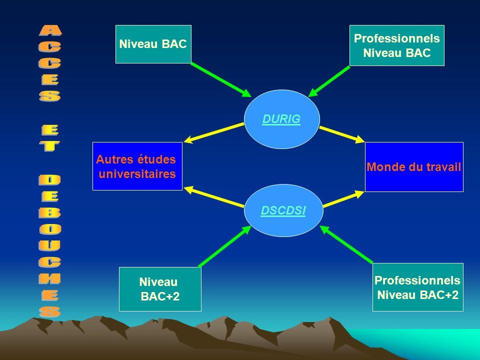 Niveau BAC Professionnels Niveau BAC DURIG DSCDSI Autres études universitaires Monde du travail Niveau BAC+2 Professionnels Niveau BAC+2