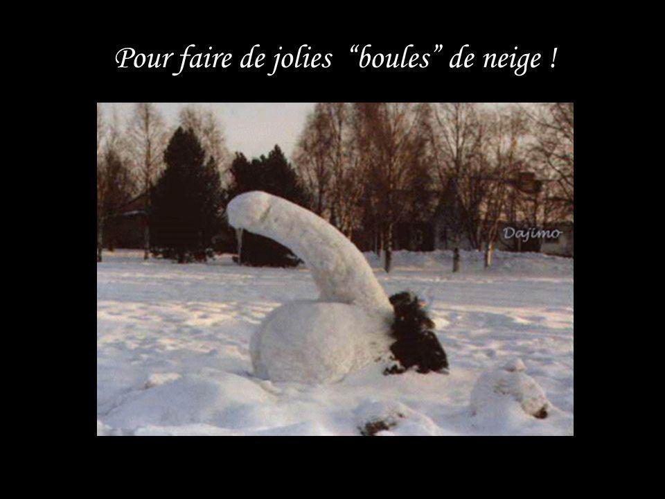 Pour faire des bonshommes de neige trop mignons… Pour faire des bonshommes de neige trop mignons…