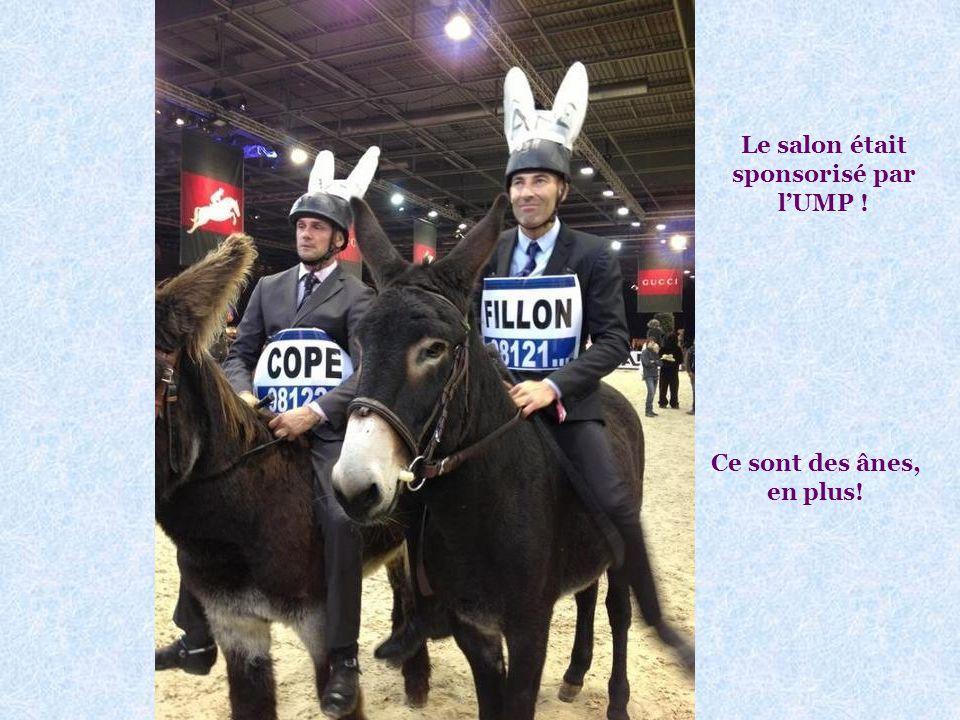 Nicolas Canteloup au salon du cheval : Voir photo page suivante