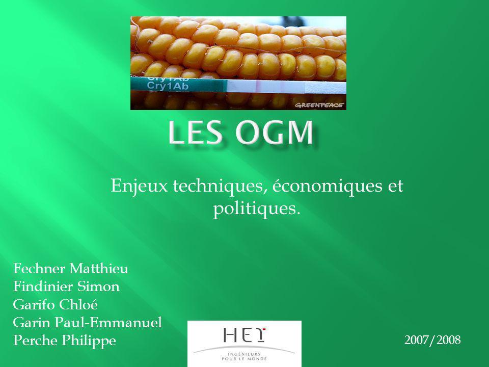 Enjeux techniques, économiques et politiques. Fechner Matthieu Findinier Simon Garifo Chloé Garin Paul-Emmanuel Perche Philippe 2007/2008
