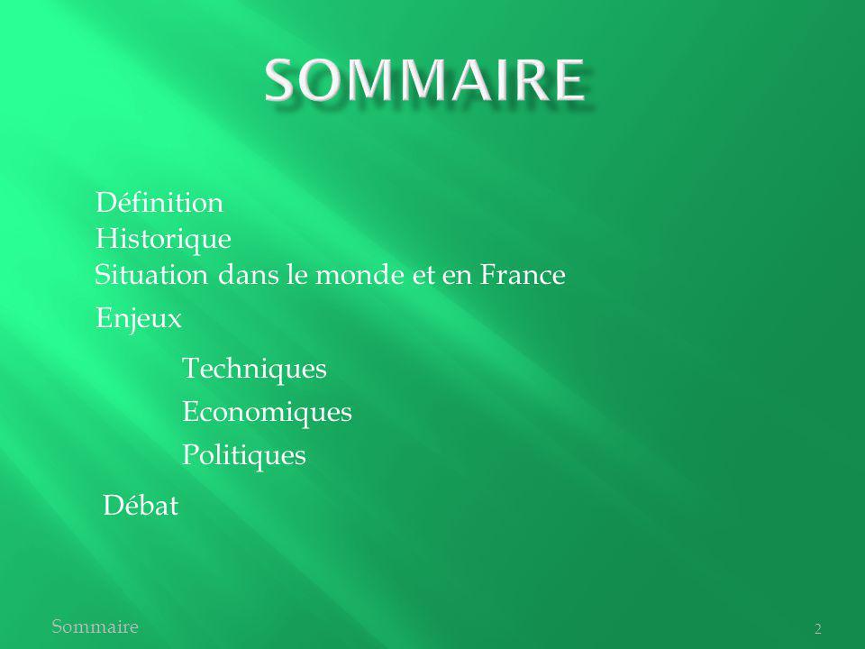 Historique Définition Situation dans le monde et en France Politiques Economiques Techniques Débat Enjeux Sommaire 2