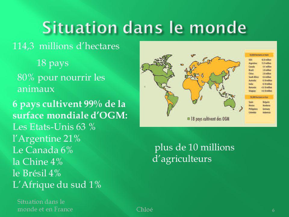 Chloé Situation dans le monde et en France 6 plus de 10 millions dagriculteurs 18 pays 6 pays cultivent 99% de la surface mondiale dOGM: Les Etats-Uni