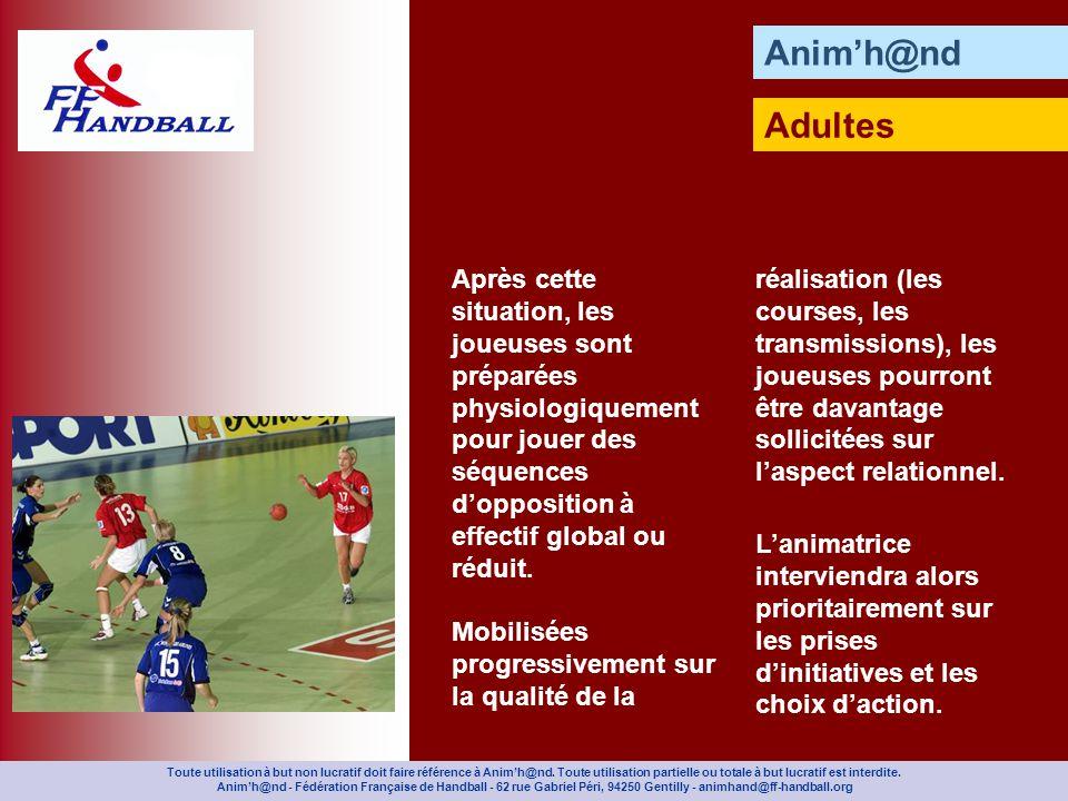 Animh@nd Adultes Toute utilisation à but non lucratif doit faire référence à Animh@nd.