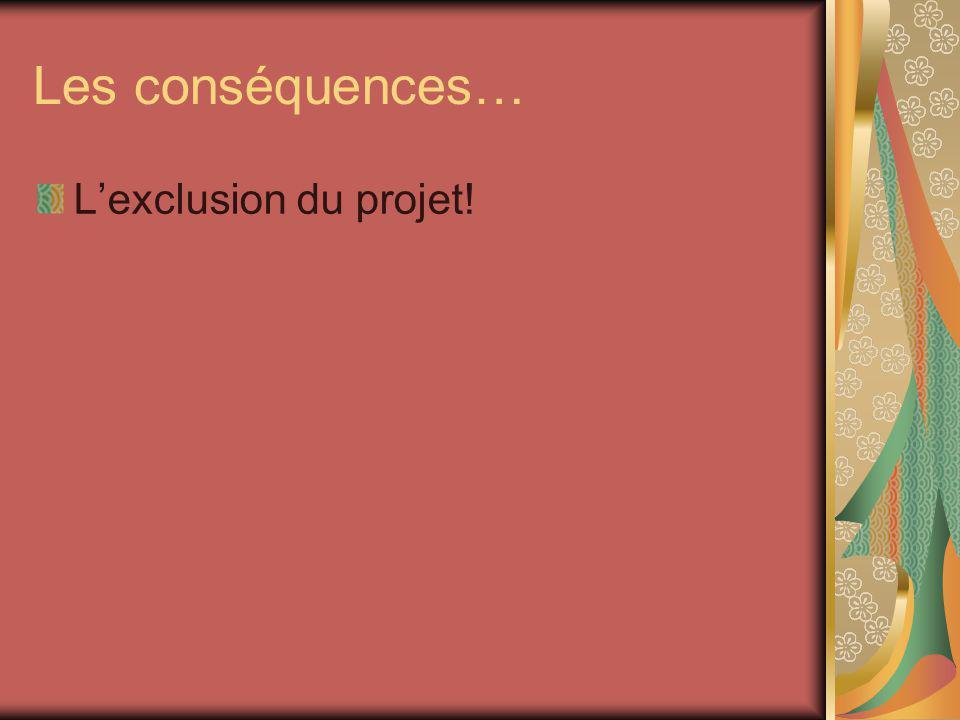 Les conséquences… Lexclusion du projet!