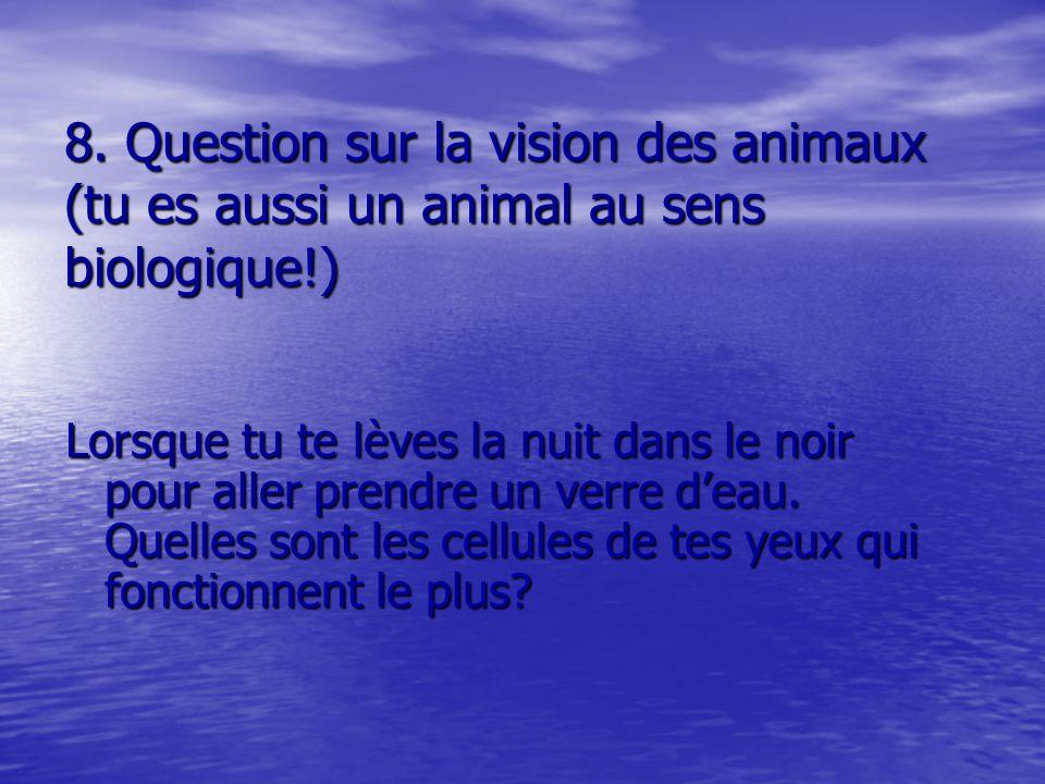 8. Question sur la vision des animaux (tu es aussi un animal au sens biologique!) Lorsque tu te lèves la nuit dans le noir pour aller prendre un verre