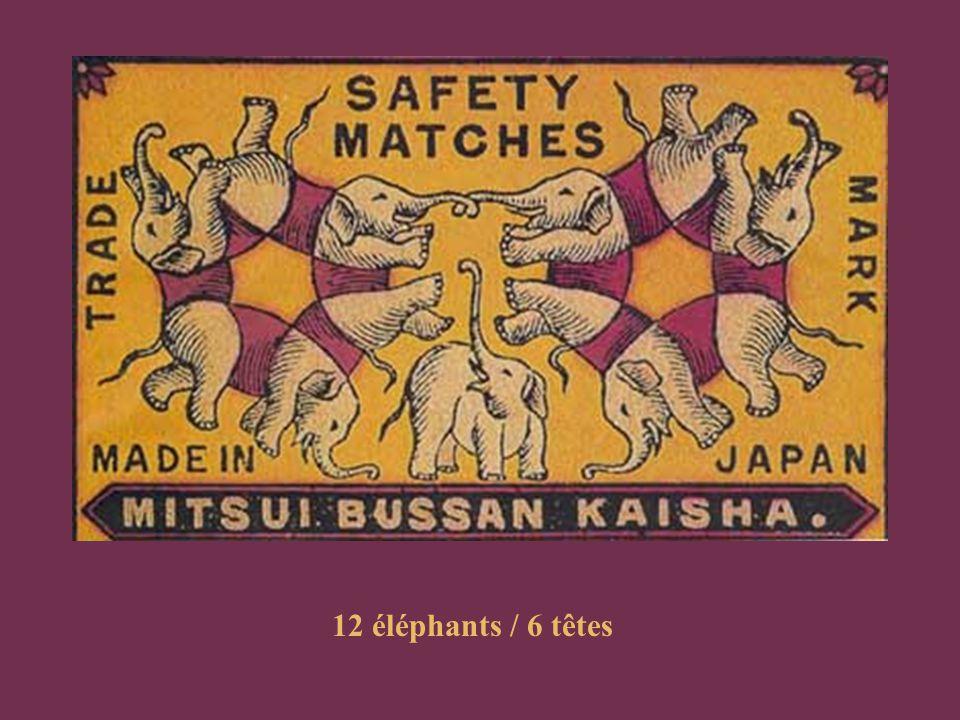 12 éléphants / 6 têtes
