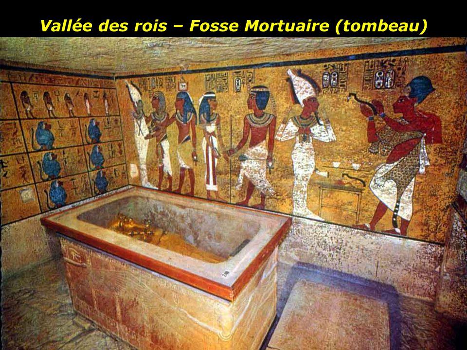 La chambre funéraire est un cercueil géant de plus de 5 mètres de long et près de 3 mètres de hauteur couvert d'or. Des cercueils successifs protégeai