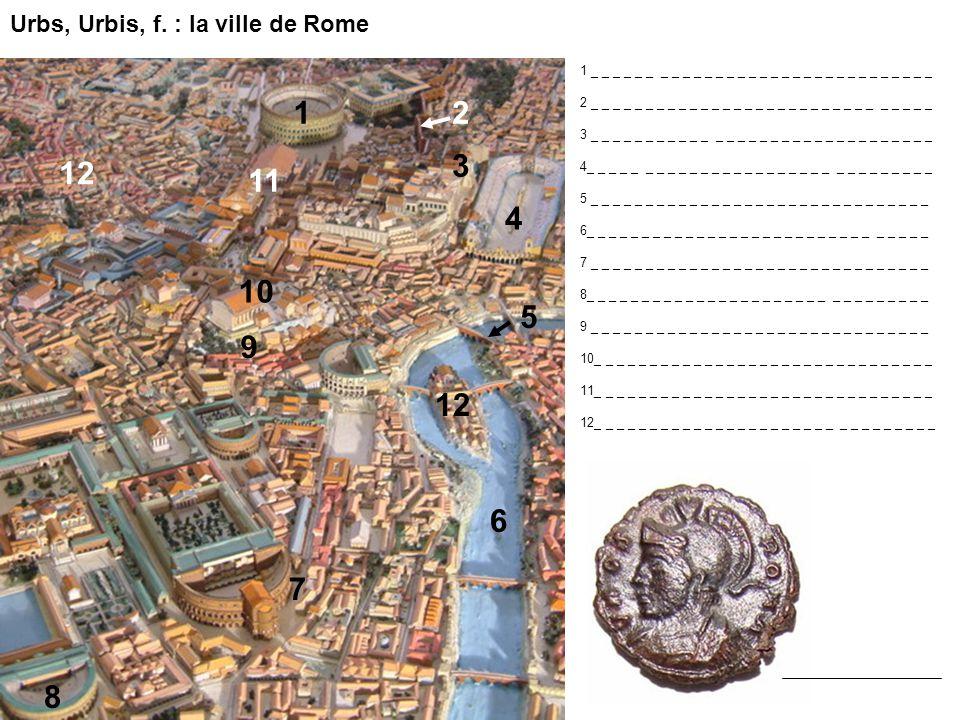 Urbs, Urbis, f. : la ville de Rome 6 5 1 4 9 10 8 2 12 11 7 1 _ _ _ _ _ _ _ _ _ _ _ _ _ _ _ _ _ _ _ _ _ _ _ _ _ _ _ _ _ _ _ 2 _ _ _ _ _ _ _ _ _ _ _ _