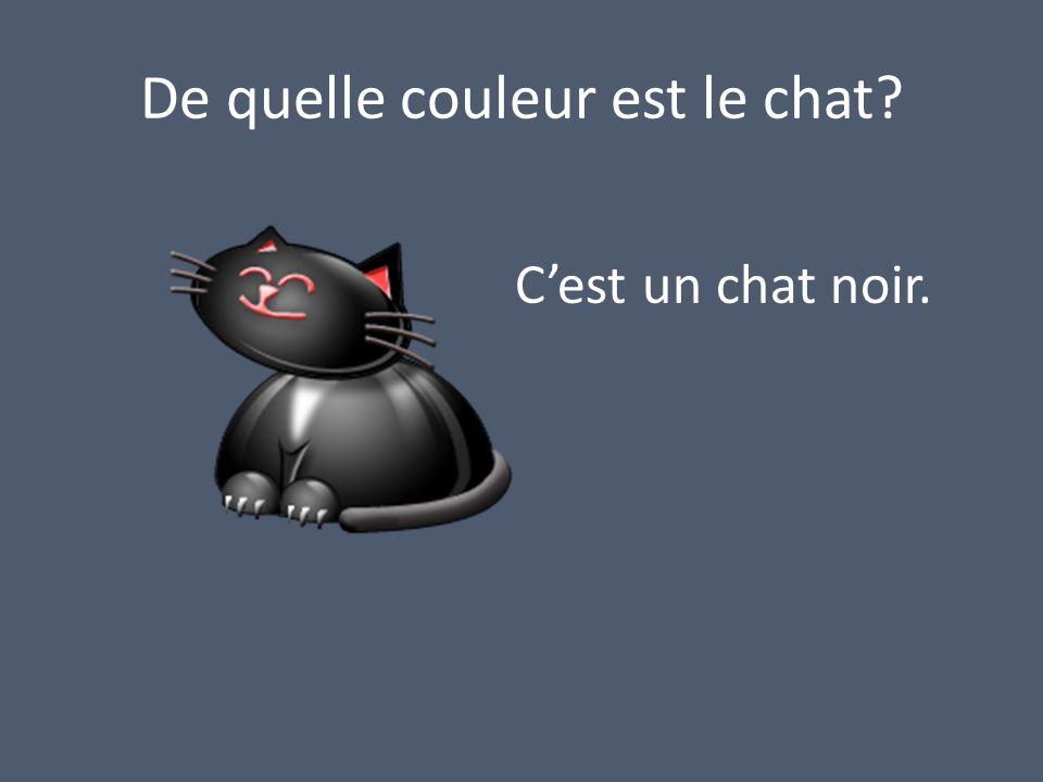 De quelle couleur est le chat? Cest un chat noir.