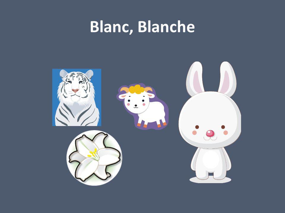 Blanc, Blanche