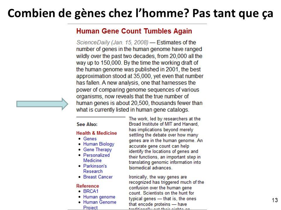 Combien de gènes chez lhomme Pas tant que ça RNT - Prof. Junod - Leçon 8 (11.4.2011) 13