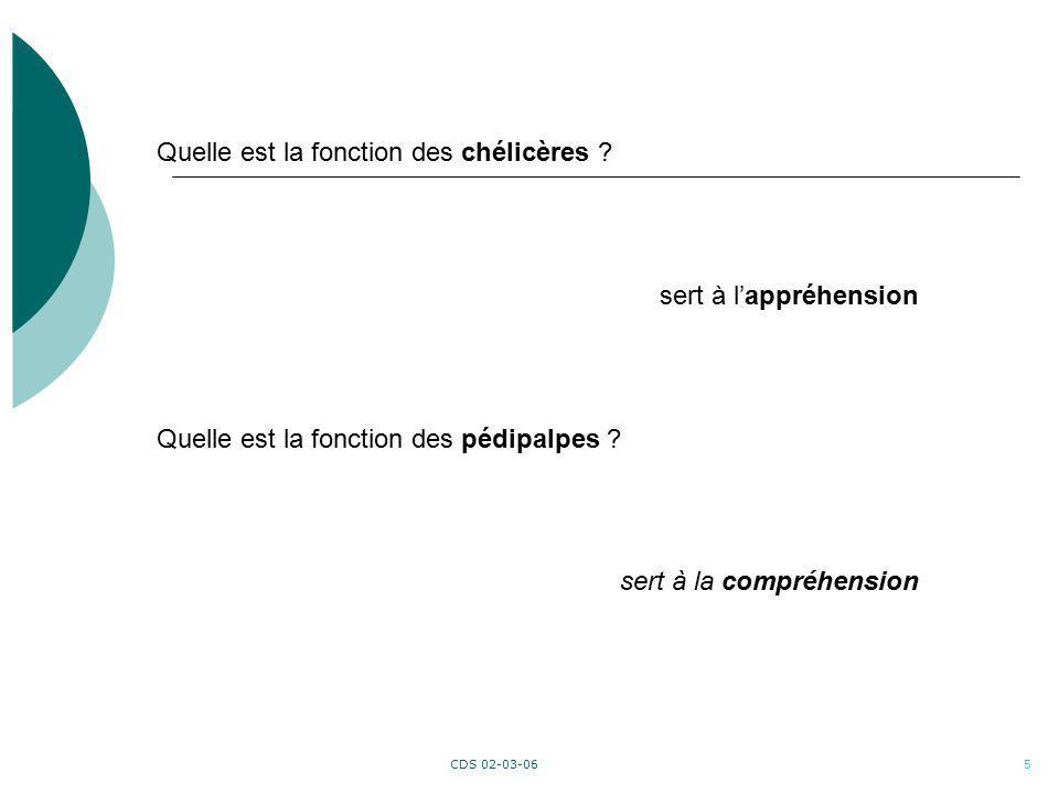 CDS 02-03-0616 EUCLIDE Analyse disciplinaire Conscientisation des compétences à acquérir Conscientisation de la différence entre linformation et la connaissance Transcodage Contextualisation Maths-Français