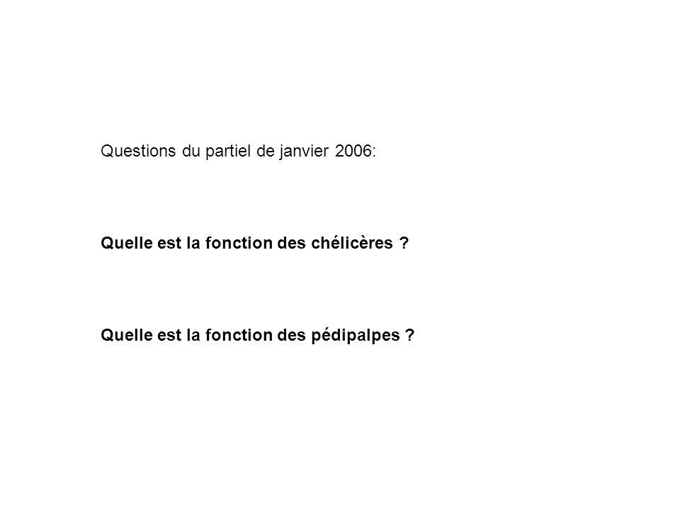Questions du partiel de janvier 2006: Quelle est la fonction des chélicères .