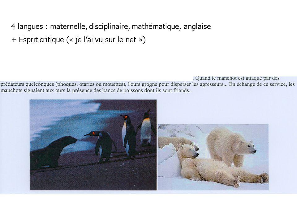 4 langues : maternelle, disciplinaire, mathématique, anglaise + Esprit critique (« je lai vu sur le net »)