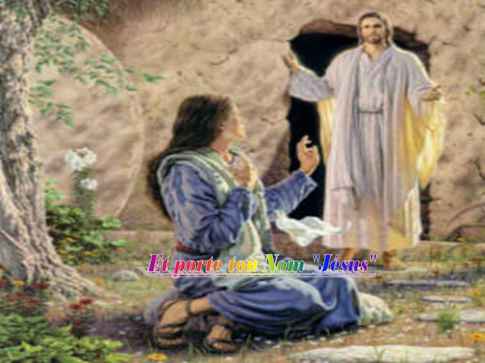 Les disciples se dirent lun à lautre : »Notre cœur nétait-il pas brûlant « tandis quil nous parlait en chemin et nous expliquait les Écritures .