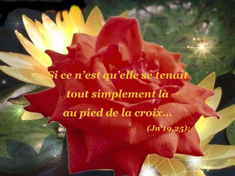 Si ce nest quelle découvrait progressivement le détachement de son Fils entré dans son ministère… (Mt 12, 46-50);