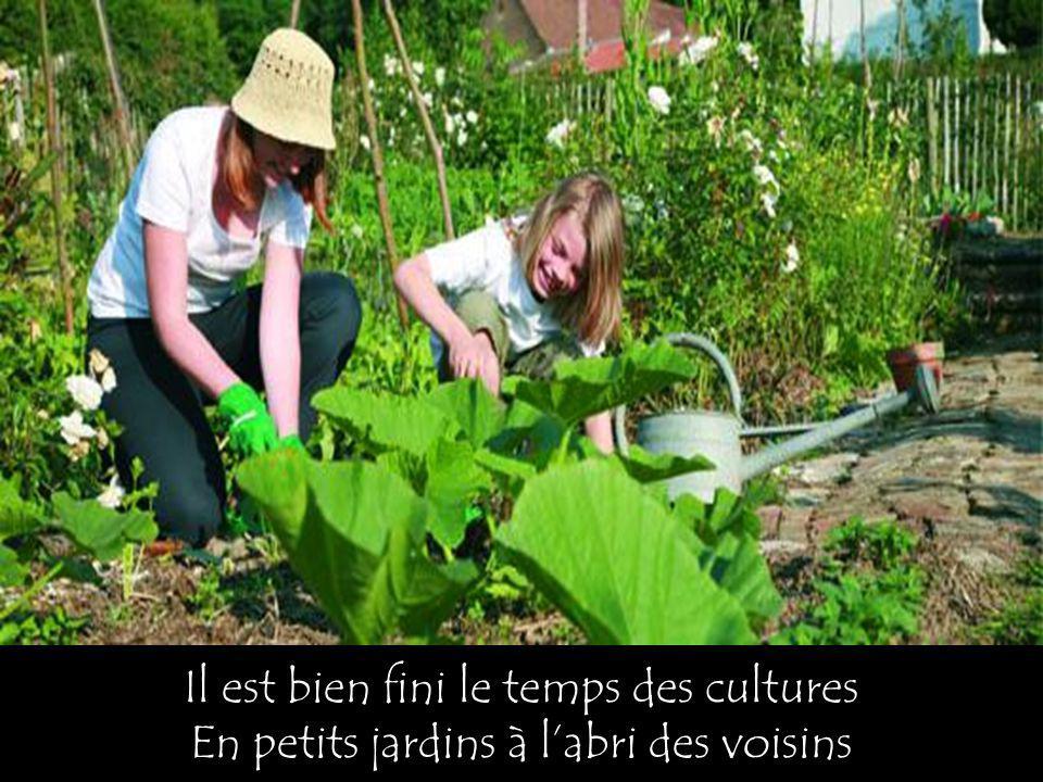 Il est bien fini le temps des cultures En petits jardins à labri des voisins