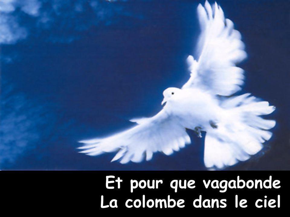 Et pour que vagabonde La colombe dans le ciel